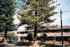 Eastern Beach Holiday Units - Accommodation Bookings