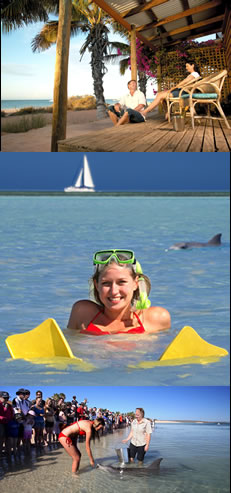 Monkey Mia Dolphin Resort - Accommodation Bookings