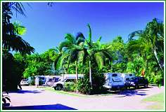 Tropical Hibiscus Caravan Park - Accommodation Bookings
