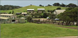 Ace Hi Riding Ranch - Accommodation Bookings