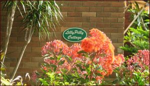 Lillypilly - Accommodation Bookings