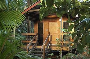 Cape Trib Beach House - Accommodation Bookings