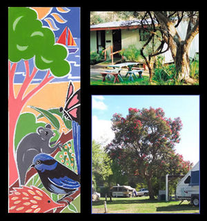 Bushland Cabins - Accommodation Bookings