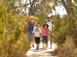 Long Island Caravan Park Cabins - Accommodation Bookings