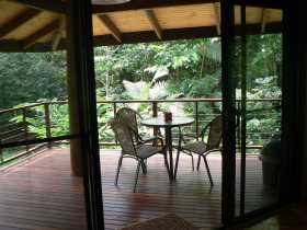 Cape Trib Exotic Fruit Farm Bed and Breakfast - Accommodation Bookings