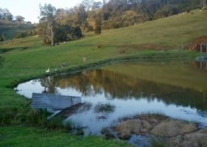 Barkeldine Farm Country Retreat - Accommodation Bookings