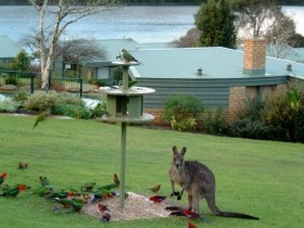 Gipsy Point Lakeside - Accommodation Bookings