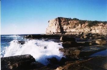 Terrigal Lagoon Bed and Breakfast - Accommodation Bookings