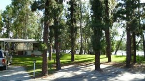 Barham Caravan  Tourist Park - Accommodation Bookings