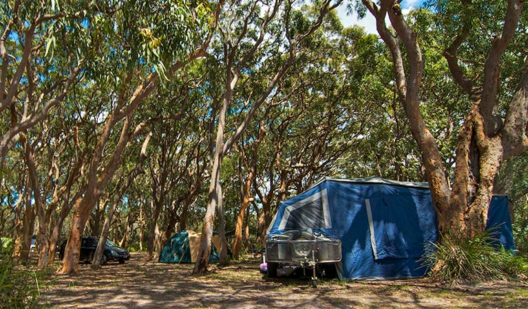 Stewart and Lloyds campground - Accommodation Bookings