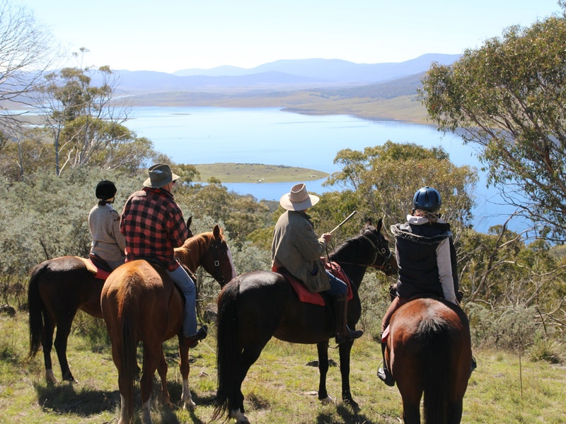 Reynella Homestead and Horseback Rides - Accommodation Bookings