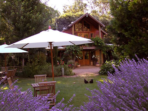 Lavender Hue - Accommodation Bookings