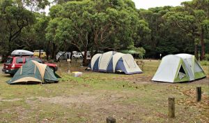 Pretty Beach Campground Murramarang National Park - Accommodation Bookings