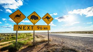 Nullarbor Roadhouse - Accommodation Bookings
