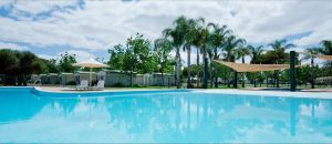 Berri Riverside Holiday Park - Accommodation Bookings