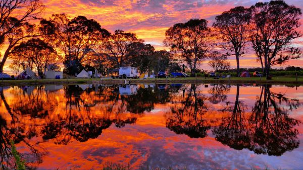 Coonawarra Bush Holiday Park - Accommodation Bookings