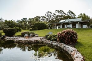 Yellow Dog Cottage - Accommodation Bookings