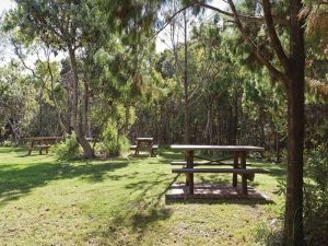 Illaroo group camping area - Accommodation Bookings