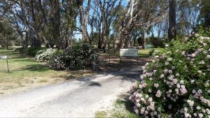 Camawald Coonawarra Cottage BB - Accommodation Bookings