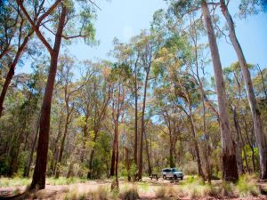 Coolah Tops National Park Camping - Accommodation Bookings