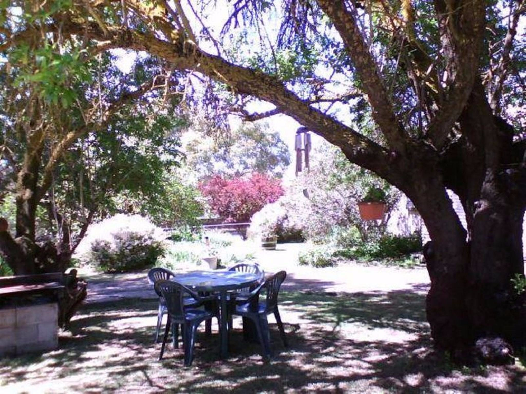 Morse Cottage - Accommodation Bookings