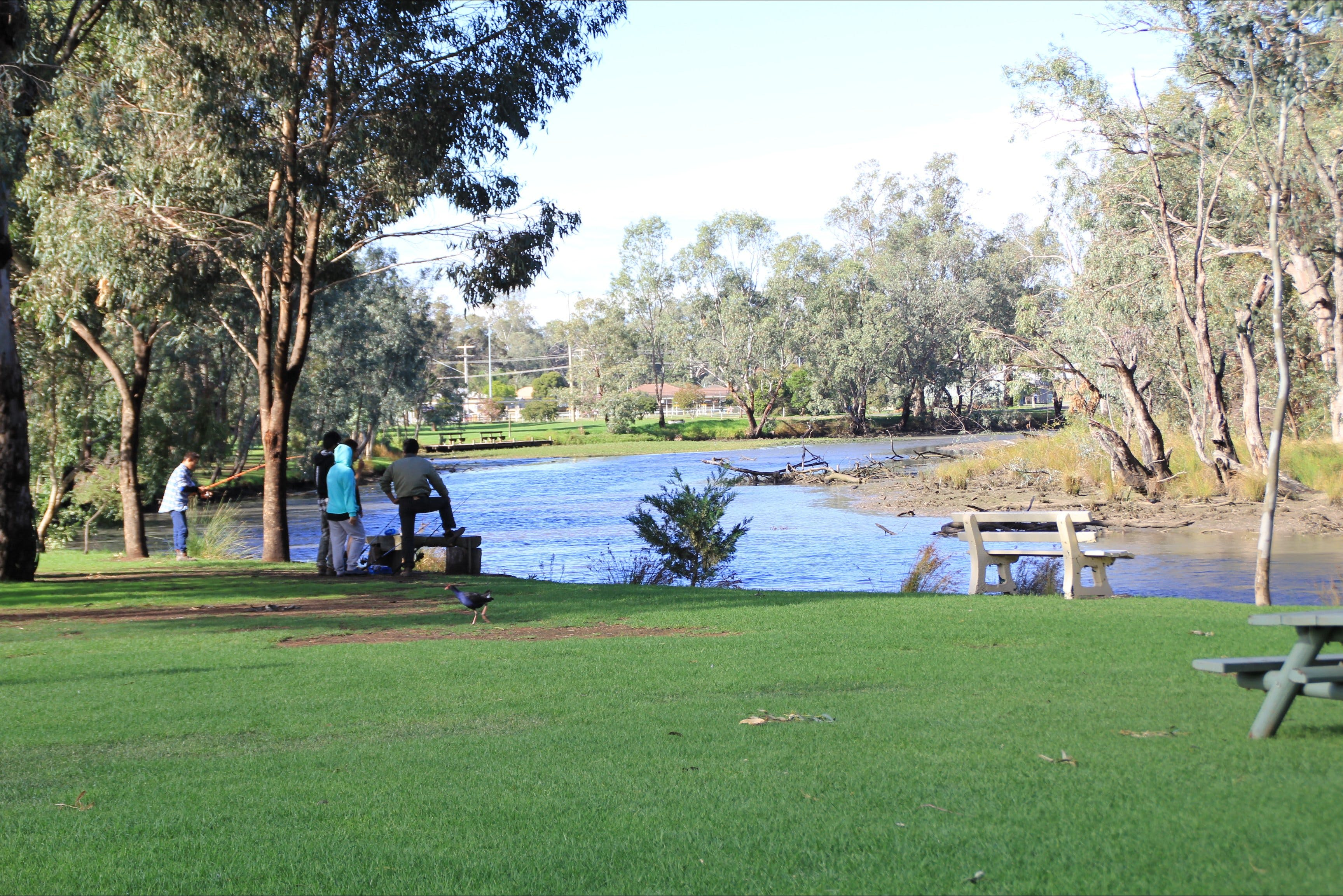 Numurkah Caravan Park - Accommodation Bookings