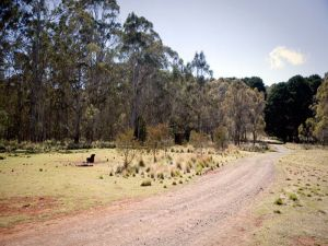 The Pines campground - Accommodation Bookings