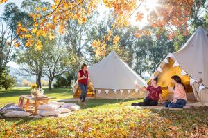 Valley View Glamping - Accommodation Bookings