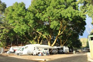 Williamstown Queen Victoria Jubilee Park - Accommodation Bookings
