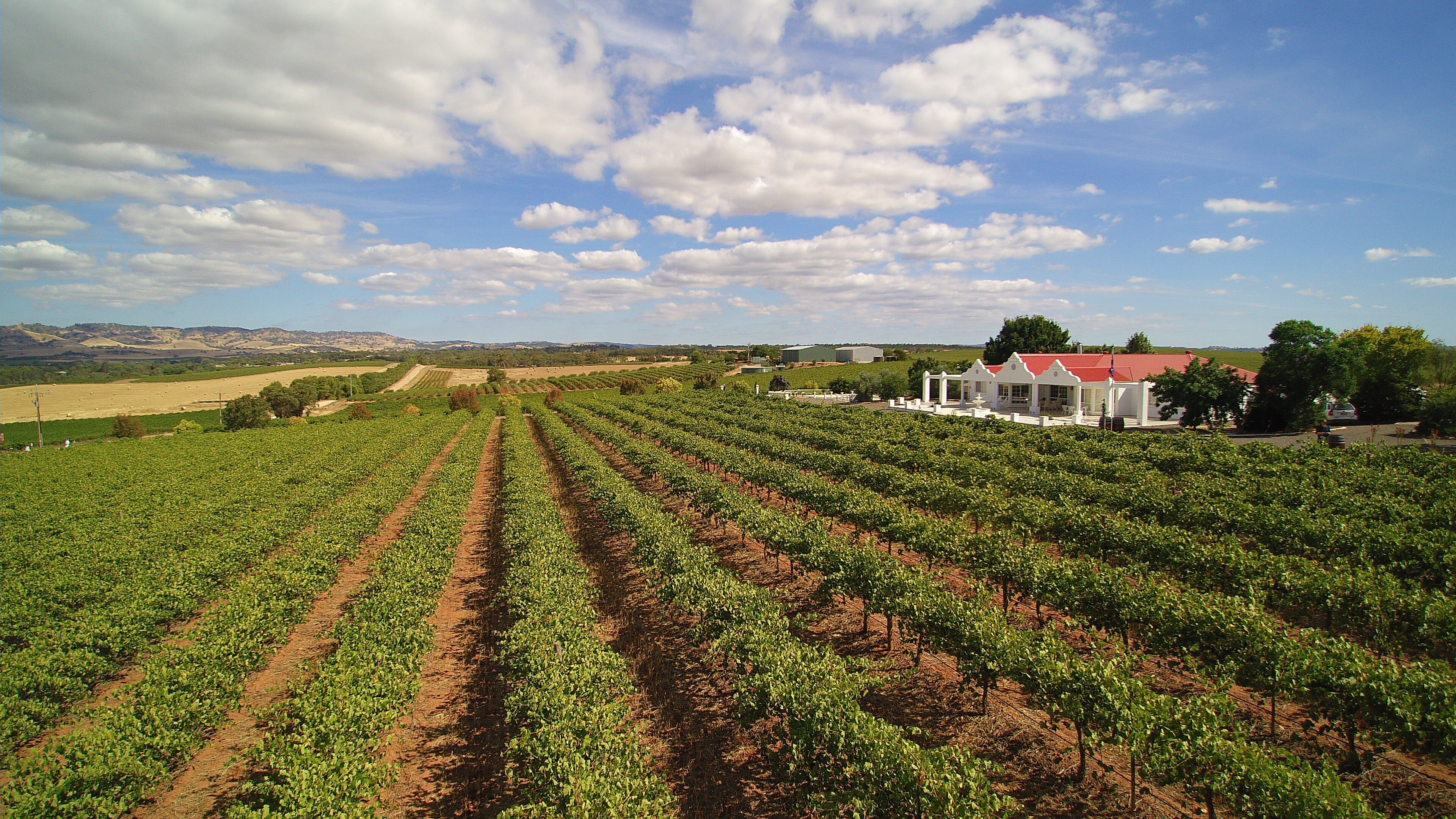 1837 Barossa Luxury Vineyard Cottages - Accommodation Bookings