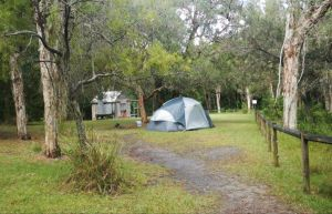 Kylies Hut walk-in campground - Accommodation Bookings