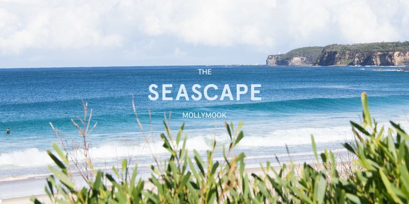 Mollymook Seascape Motel  Apartments - Accommodation Bookings