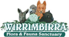 Wirrimbirra Sanctuary - Accommodation Bookings