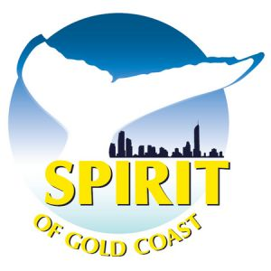 Spirit of Gold Coast Whale Watching - Accommodation Bookings