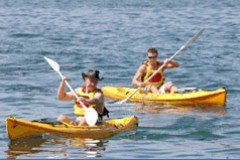 Manly Kayaks - Accommodation Bookings