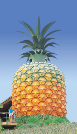 The Big Pineapple - Accommodation Bookings