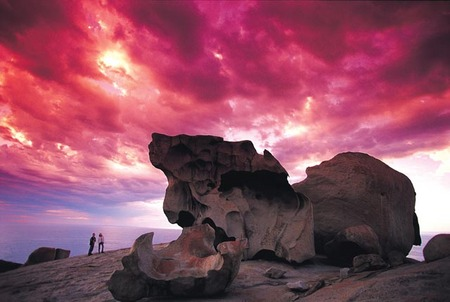 Kangaroo Island Adventure Tour 2 day/1 night - Accommodation Bookings