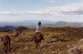 High Country Horses - Accommodation Bookings
