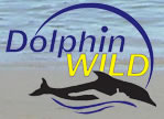 Dolphin Wild - Accommodation Bookings