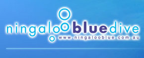 Ningaloo Blue Dive - Accommodation Bookings