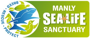Manly SEA LIFE Sanctuary - Accommodation Bookings