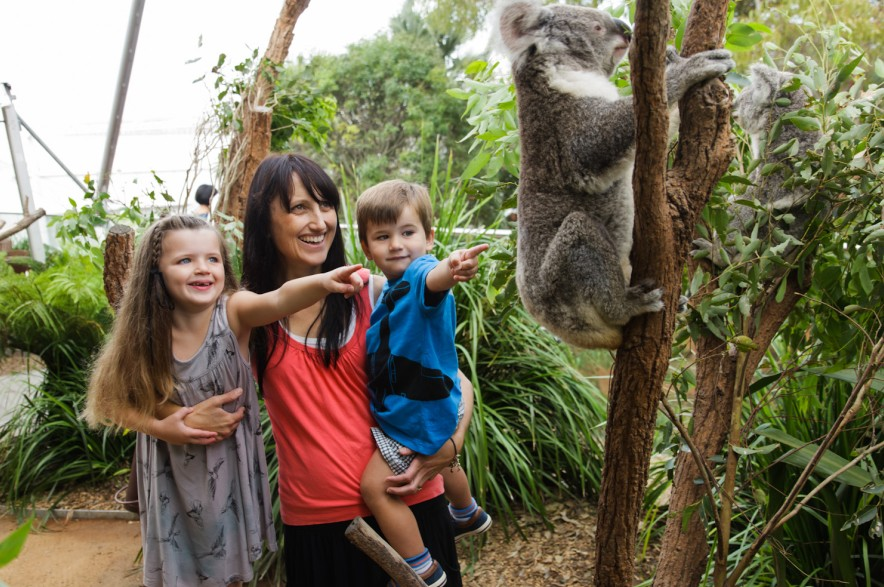 WILD LIFE Sydney Zoo - Accommodation Bookings