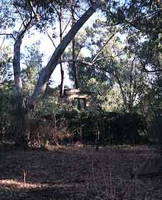 Ghost House Walk Trail Yanchep National Park - Accommodation Bookings