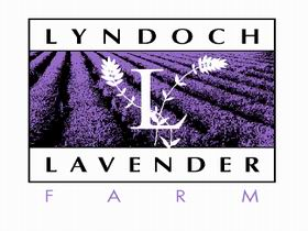 Lyndoch Lavender Farm and Cafe - Accommodation Bookings