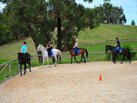 Megan Jones Riding School and Trail Rides - Accommodation Bookings