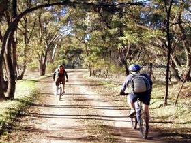 Bike About Mountain Bike Tours And Hire - Accommodation Bookings