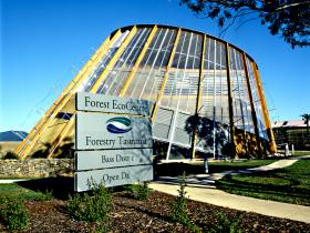 Forest EcoCentre - Accommodation Bookings