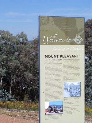 Mount Pleasant Lookout - Accommodation Bookings