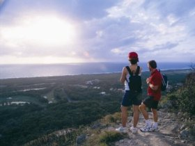 Mount Coolum National Park - Accommodation Bookings