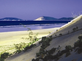 Cooloola Great Sandy National Park - Accommodation Bookings
